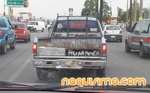 Mexican Hummer