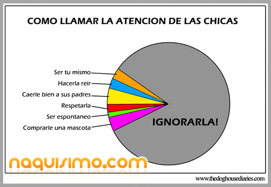 chicas_poll